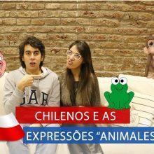 """Chilenos e as Expressões """"Animalescas"""""""